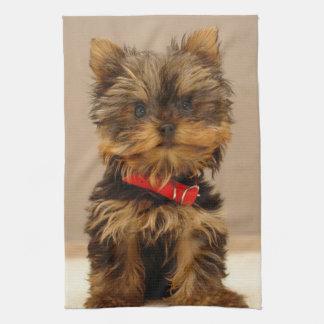 Cute Yorkshire Terrier Kitchen Towel