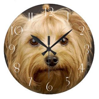 Cute Yorkshire Terrier Large Clock