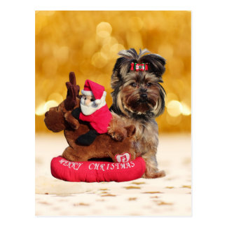 Cute Yorkshire Terrier Merry Christmas Postcard
