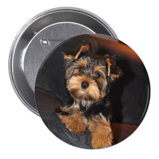 Cute Yorkshire Terrier Puppy Dog 3 Inch Round Button