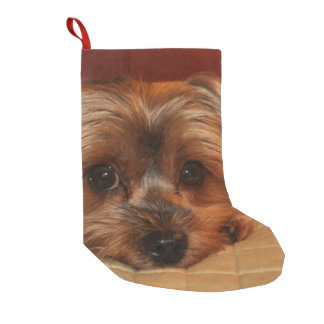 Cute Yorkshire Terrier Puppy Small Christmas Stocking