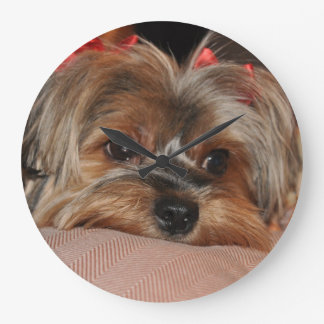 Cute yorkshire terrier puppy with red bows large clock