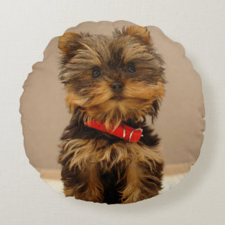 Cute Yorkshire Terrier Round Pillow