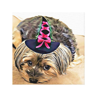 Cute Yorkshire Terrier with witch hat Canvas Print