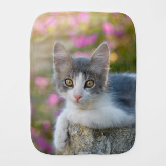 Cute Young Bicolor Cat Kitten Pink Flowers Photo Burp Cloth