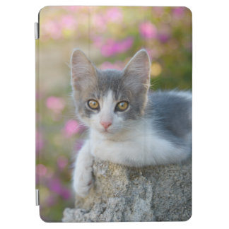 Cute Young Bicolor Cat Kitten Pink Flowers Photo - iPad Air Cover