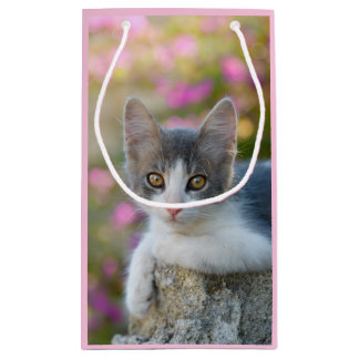 Cute Young Bicolor Cat Kitten Pink Flowers Photo Small Gift Bag