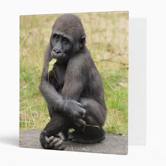 Cute young gorilla vinyl binder