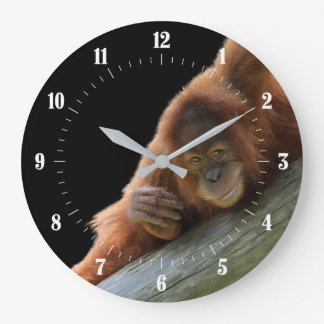 Cute Young Orangutan Clocks