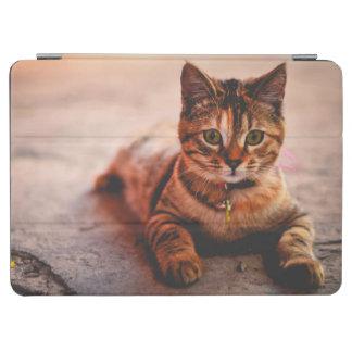 Cute Young Tabby Cat Kitten Kitty Pet iPad Air Cover