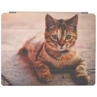 Cute Young Tabby Cat Kitten Kitty Pet iPad Cover