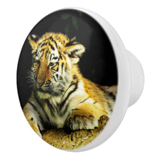 cute young tiger ceramic knob