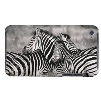 Cute Zebra Herd Nature Safari Black White Barely There iPod Cases