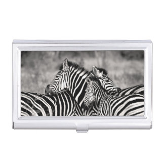 Cute Zebra Herd Nature Safari Black White Case For Business Cards