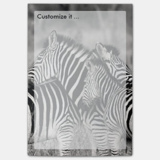 Cute Zebra Herd Nature Safari Black White Post-it Notes