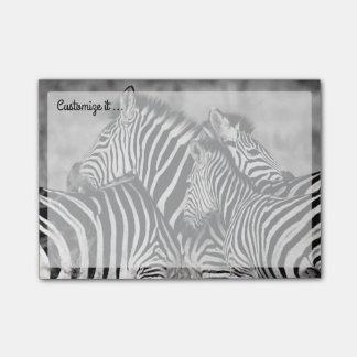 Cute Zebra Herd Nature Safari Black White Post-it® Notes
