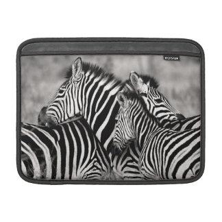 Cute Zebra Herd Nature Safari Black White Sleeves For MacBook Air