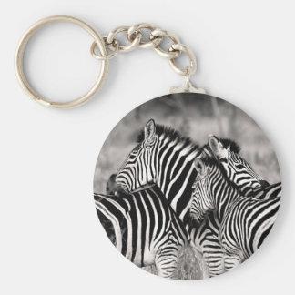 Cute Zebra Herd Nature Safari Wildlife Basic Round Button Keychain