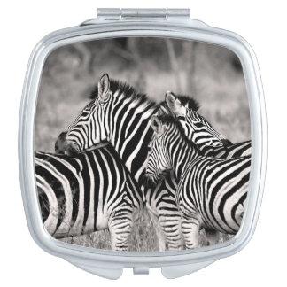 Cute Zebra Herd Nature Safari Wildlife Mirror For Makeup