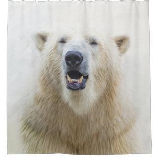 Cute  Zoo Polar Bear
