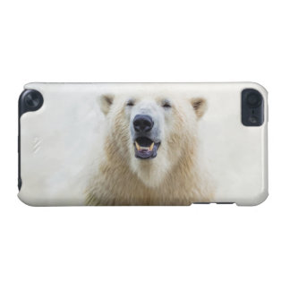 Cute  Zoo Polar Bear iPod Touch (5th Generation) Cases