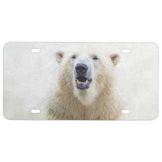 Cute  Zoo Polar Bear License Plate