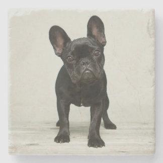 Cutest French Bulldog Puppy Stone Coaster