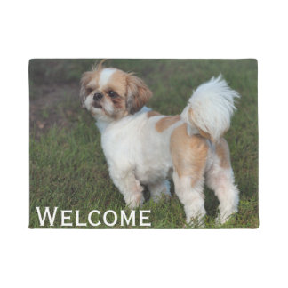 Cutest  Shih Tzu Doormat