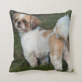 Cutest Shih Tzu Throw Pillow