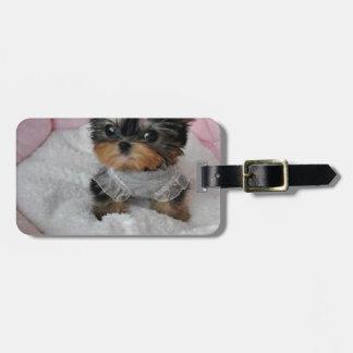 cutie pie.jpg luggage tag