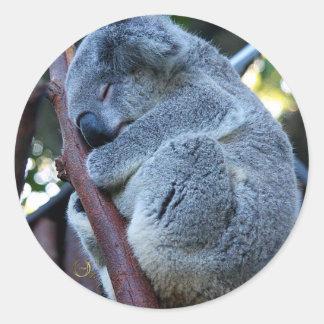 Cutie Pie Koala Classic Round Sticker