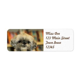 Cutie Return Address Label