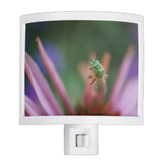 Cutter Bee on a Purple Flower Night Light