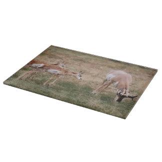 Cutting Board Glass Antelope Wildlife
