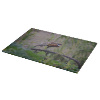 Cutting Board Glass Bird Wildlife