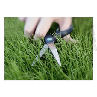 Cutting the grass with a pair of scissors card