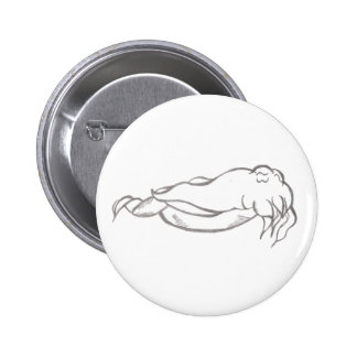 Cuttlefish Button