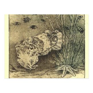 cuttlefish postcard