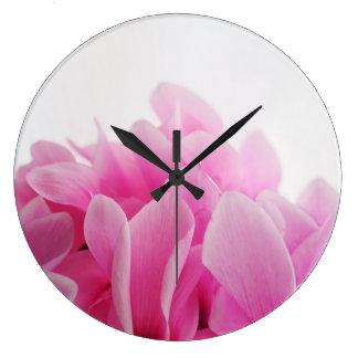 Cyclamen pink petals clocks
