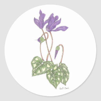 Cyclamen Sticker