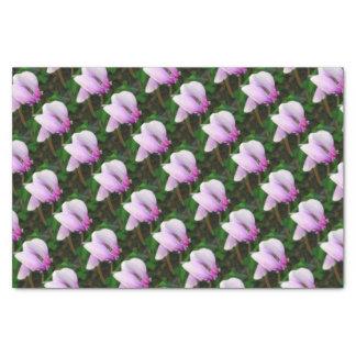 Cyclamen Tissue Paper