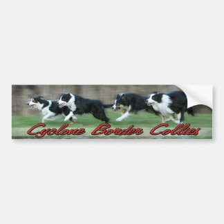 Cyclone Border Collies bumper sticker