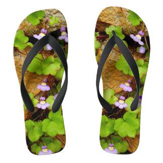 Cymbalaria Muralis Flip Flops