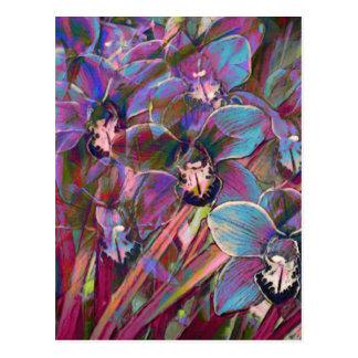 Cymbidium Orchid Carnival Postcard