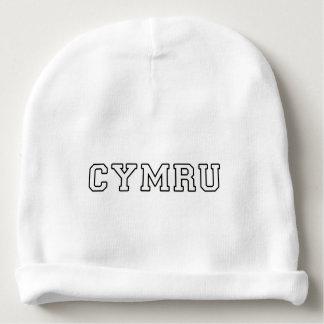 Cymru Baby Beanie