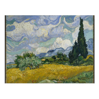 Cypress Grove and Wheat Field Postcard
