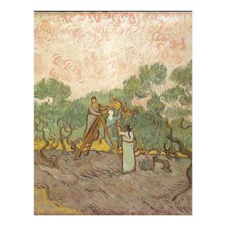 Cypress Grove Letterhead
