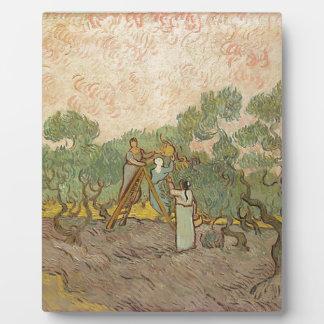Cypress Grove Plaque