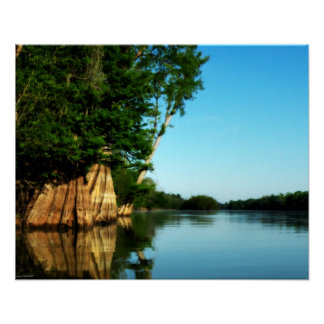 Cypress River Morning Poster