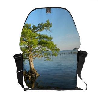 Cypress Tree on The Outer Banks Messenger Bag